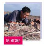 Headshot of Dr Xu Xing